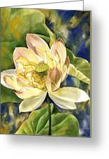 Lotus In Blooms Greeting Card