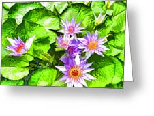 Lotus In Pond Greeting Card