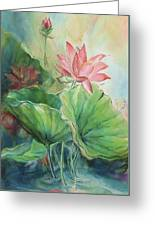 Lotus Of Hamakua Greeting Card