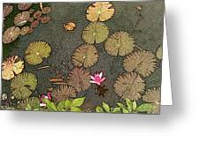 Lotus Pond Greeting Card