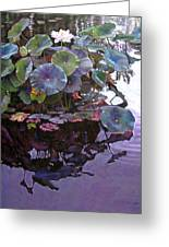 Lotus Reflections Greeting Card