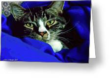 Louis And The Snuggy Greeting Card