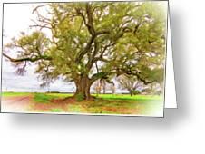 Louisiana Dreamin' Greeting Card