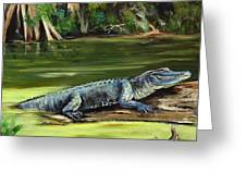 Louisiana Gator Greeting Card