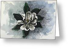 Louisiana Magnolia Greeting Card