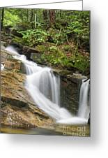Louisville Brook - Bartlett New Hampshire Greeting Card