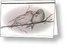 Love Birds Greeting Card by Ginny Youngblood