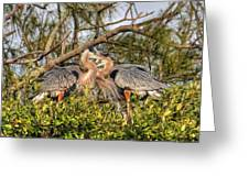 Love Birds - Great Blue Heron Greeting Card