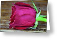 Love By Rose  Greeting Card