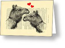 Love Camels Greeting Card
