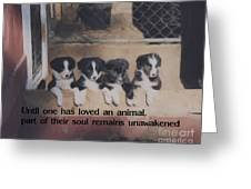 Love For Animals Greeting Card by Smilin Eyes  Treasures