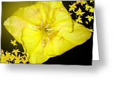 Love Glow Greeting Card