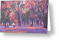 Love In Lal Bagh 1 Greeting Card