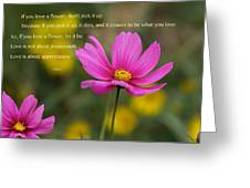 Love Is Appreciation Greeting Card