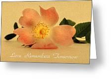 Love Remembers Tomorrow Greeting Card