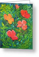 Love Those Poppies Greeting Card