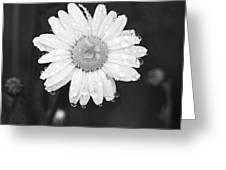 Love Weeps Greeting Card