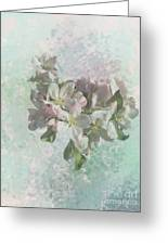 Lovely Apple Blossoms Greeting Card
