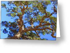 Lovely As A Tree Greeting Card