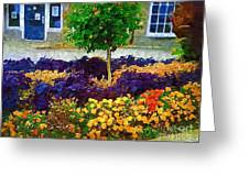 Lovely Colors Greeting Card