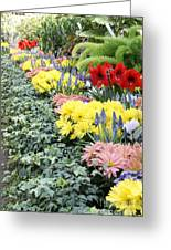Lovely Flowers In Manito Park Conservatory Greeting Card
