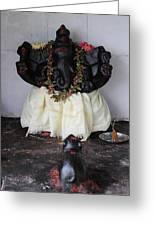 Lovely Ganesha, Valparai Greeting Card