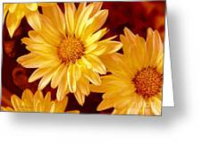 Lovely Mums Greeting Card