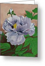 Lovely Peony Flower With Buds Greeting Card