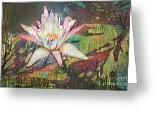 Lovely Waterlilies 2 Greeting Card