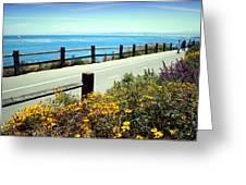 Lovers Point Walkway Greeting Card
