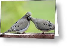 Lovey Doveys Greeting Card