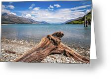 Low Angle View From The Rocky Dart River Bank At Kinloch, Nz Greeting Card