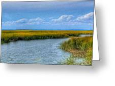Low Country Vista Greeting Card