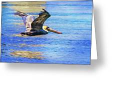 Low Flying Pelican Greeting Card