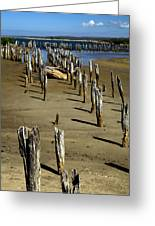 Low Tide #2 Greeting Card