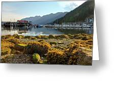 Low Tide At Horseshoe Bay Canada Greeting Card