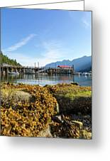 Low Tide At Horseshoe Bay Canada On A Sunny Day Greeting Card