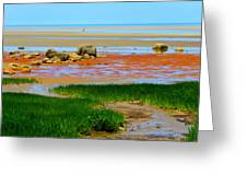 Low Tide Beauty Greeting Card