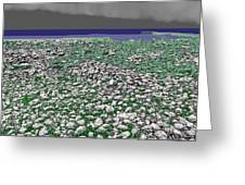 Low Tide Color 3 Greeting Card