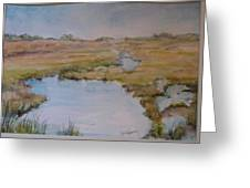 Low Tide Greeting Card by Dorothy Herron