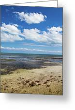 Low Tide In Paradise - Key West Greeting Card