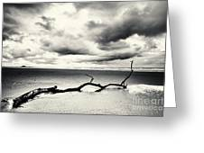Low Tide, Lindisfarne Greeting Card