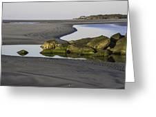 Low Tide On Tybee Island Greeting Card