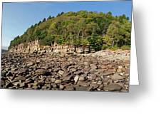 Low Tide Panorama Greeting Card