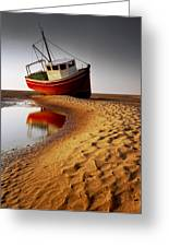 Low Tide Greeting Card by Peter OReilly
