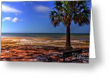 Low Tide Time Greeting Card