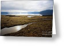 Low Water Greeting Card