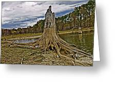 Low Water Greeting Card by Scott Pellegrin