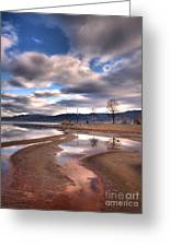 Low Waters Greeting Card