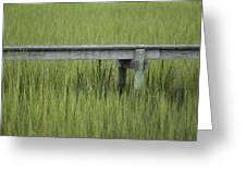 Lowcountry Dock Over Marsh Grass Greeting Card